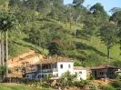 Fazenda Engenho da Serra